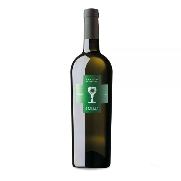 CANDORA Chardonnay 2018 Schola Sarmenti