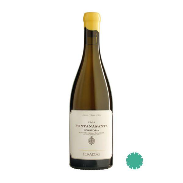 Weißwein Trentin Amphorenwein
